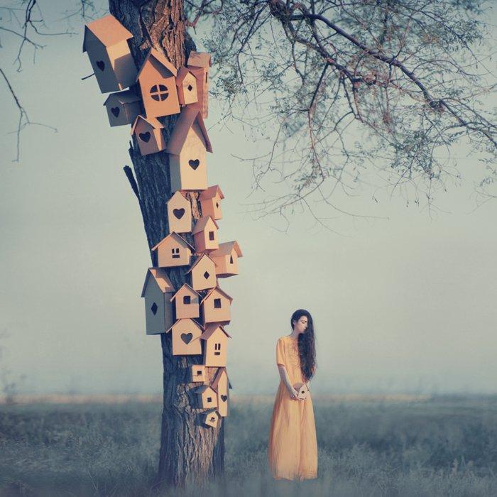 Forêt mystère maison ____by_oprisco-d65ya98