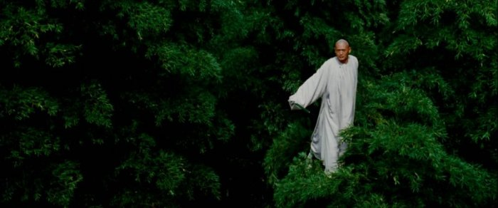 Li Mu Bai arbres