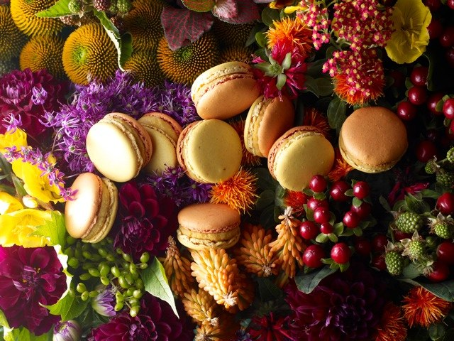 Macaron Jardin d'Automne